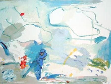 Jan van Diemen | Schaatser